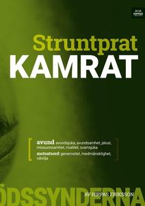 Struntprat kamrat (ljudbok) av Hippas Eriksson