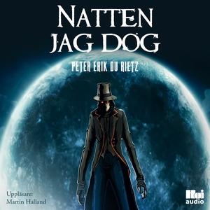 Natten jag dog (ljudbok) av Peter Erik Du Rietz