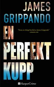 En perfekt kupp (e-bok) av James Grippando
