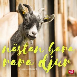 Nästan bara rara djur (ljudbok) av James Herrio