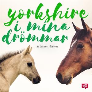 Yorkshire i mina drömmar (ljudbok) av James Her