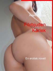 Förbjuden Kärlek: En erotisk novell (e-bok) av