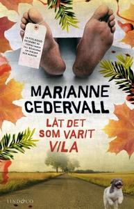 Låt det som varit vila (e-bok) av Marianne Cede