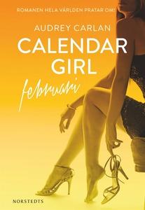 Calendar Girl : Februari (e-bok) av Audrey Carl