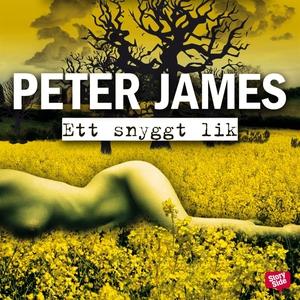 Ett snyggt lik (ljudbok) av Peter James