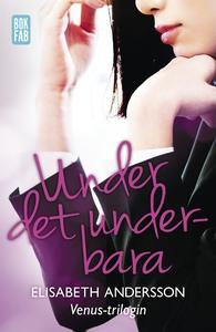 Under det underbara (e-bok) av Elisabeth Anders