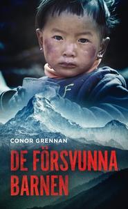De försvunna barnen (ljudbok) av Conor Grennan