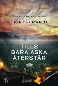 Tills bara aska återstår (e-bok) av Lisa Bjurwa