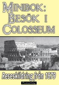 Ett besök i Colosseum år 1879 (e-bok) av Helmer