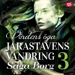 Vindens öga (ljudbok) av Saga Borg