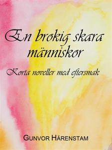 En brokig skara människor (e-bok) av Gunvor Här