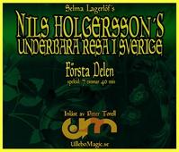 Nils Holgerssons underbara resa 1