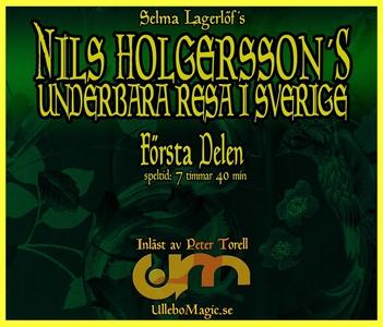 Nils Holgerssons underbara resa 1 (ljudbok) av