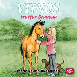 Vitnos träffar Brunöga (ljudbok) av Marie Louis