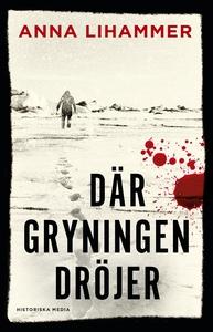 Där gryningen dröjer (e-bok) av Anna Lihammer
