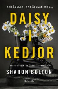 Daisy i kedjor (e-bok) av Sharon Bolton