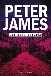 Död mans fotspår (e-bok) av Peter James