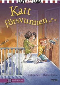 Katt försvunnen (e-bok) av Helena Bross