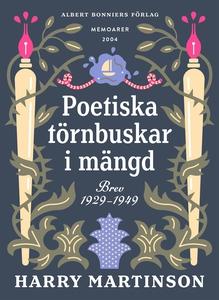 Poetiska törnbuskar i mängd : Brev 1929-1949 (e