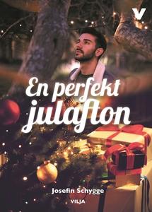 En perfekt julafton (ljudbok) av Josefine Schyg