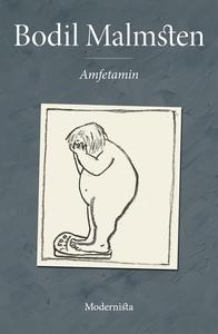 Amfetamin (e-bok) av Bodil Malmsten