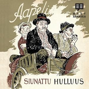 Siunattu hulluus (ljudbok) av Aapeli, Aapeli ,