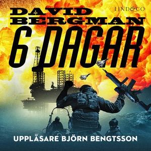 6 dagar (ljudbok) av David Bergman