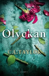 Olyckan (e-bok) av C.L. Taylor