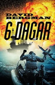 6 dagar (e-bok) av David Bergman