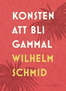 Konsten att bli gammal (e-bok) av Wilhelm Schmi