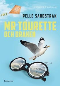 Mr Tourette och draken (e-bok) av Pelle Sandstr