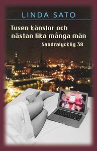 Tusen känslor och nästan lika många män (e-bok)