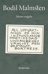 Såsom snigeln (e-bok) av Bodil Malmsten