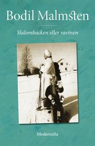 Slalombacken eller ravinen (e-bok) av Bodil Mal