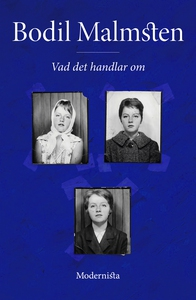 Vad det handlar om (e-bok) av Bodil Malmsten