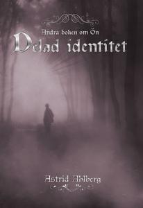 Delad identitet (e-bok) av Astrid Ahlberg
