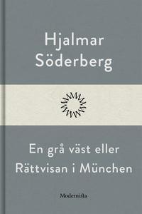 En grå väst eller Rättvisan i München (e-bok) a