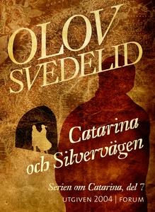 Catarina och Silvervägen : En historisk roman (