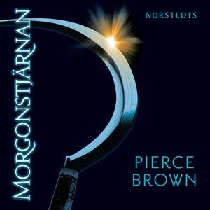 Morgonstjärnan (ljudbok) av Patrik Hammarsten,