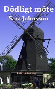 Dödligt möte (e-bok) av Sara Johnsson