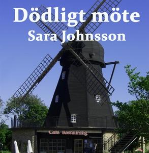 Dödligt möte (ljudbok) av Sara Johnsson
