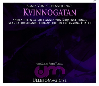 Kvinnogatan (ljudbok) av Agnes von Krusenstjern