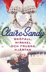 Snöfall, mirakel och frusna hjärtan (e-bok) av