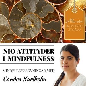 SAMLINGSUTGÅVA: Nio attityder i mindfulness av