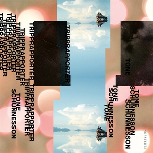 Tripprapporter (ljudbok) av Tone Schunnesson
