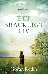 Ett bräckligt liv (e-bok) av Göran Redin
