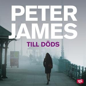 Till döds (ljudbok) av Peter James