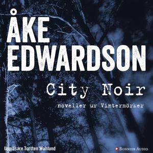 City Noir : noveller ur Vintermörker (ljudbok)