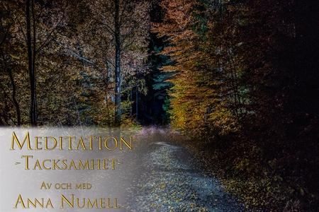 Meditation - Tacksamhet (ljudbok) av Anna Numel