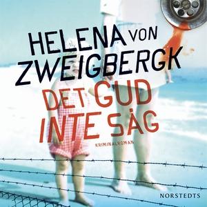 Det gud inte såg (ljudbok) av Helena von Zweigb